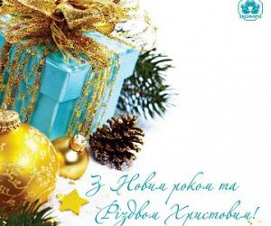 З наступаючим Новим Роком та Різдвом!