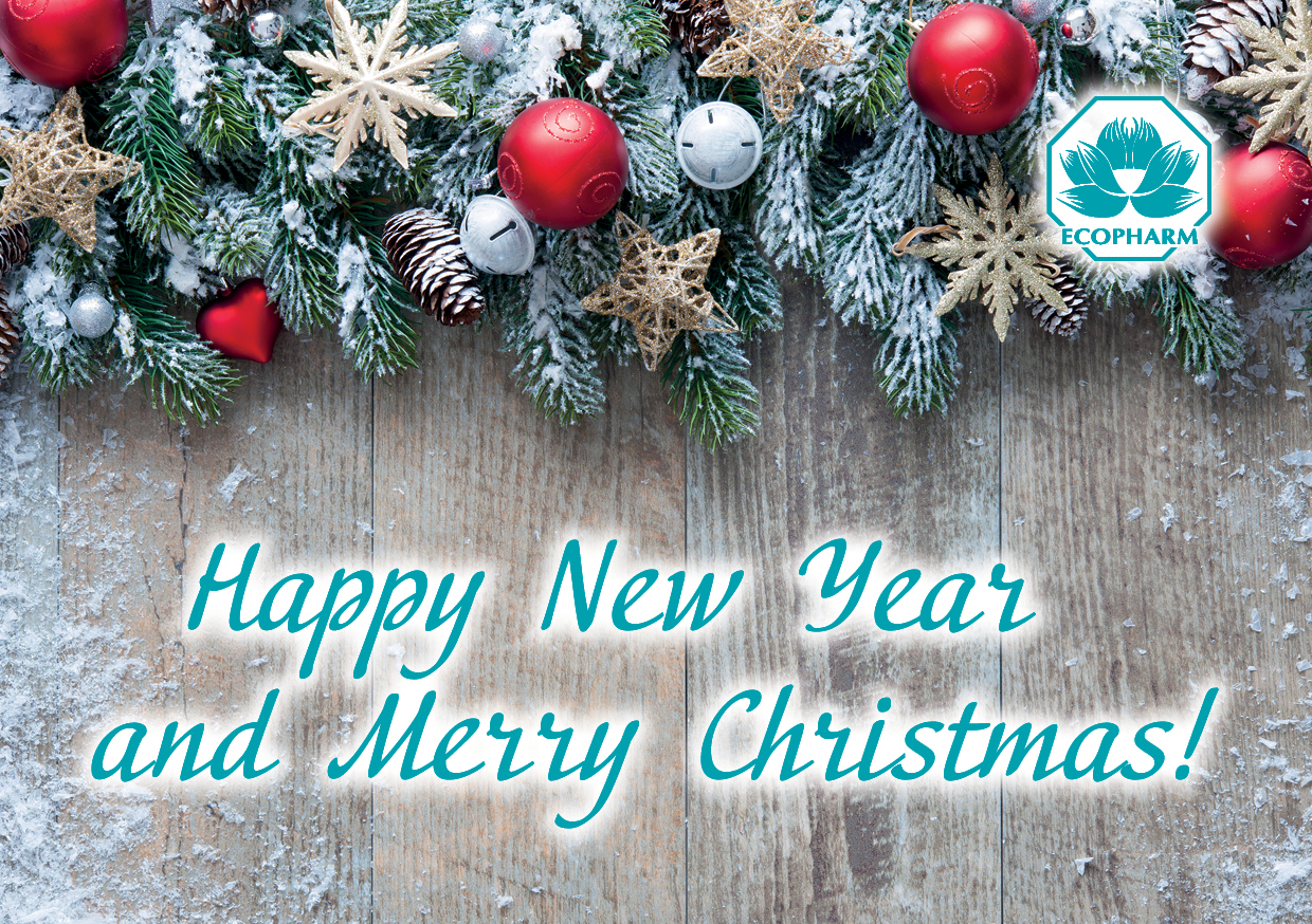 Happy New Year and Merry Christmas!